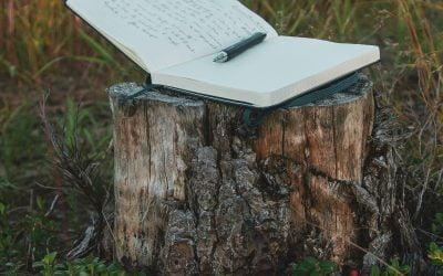 Dandelion névtelen versei