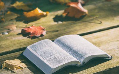 Ember és könyv